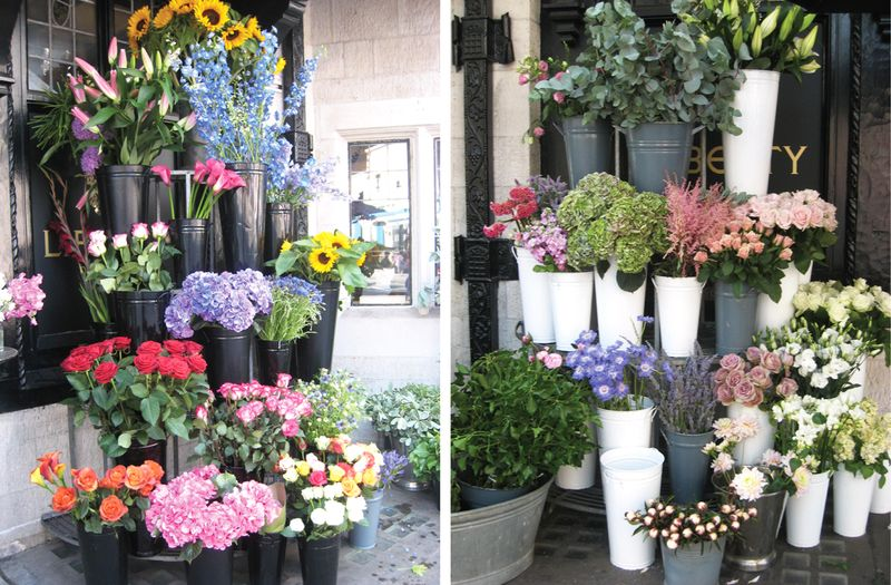 JK_flowers