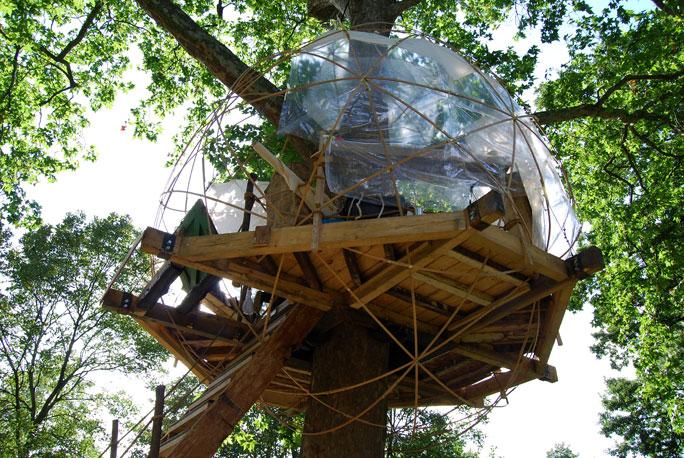Tree house4