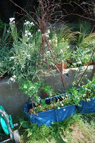 Gardens 02