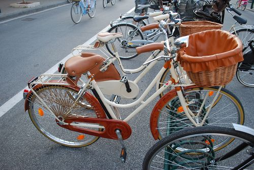 Bikes with leather lined baskets